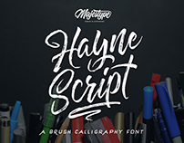 Hayne Typeface (Script & Sans)