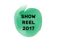 Artist's showreel 2017