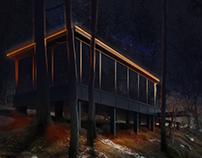 Light Design concept