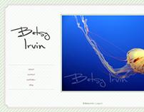 Zenfolio Website Themes