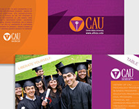 Carlos Albizu University - Programs View Book
