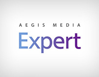 Aegis Media Expert Logotype and stationary - 2008