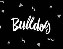 Концепции фирменного стиля Bulldog.me