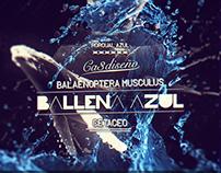 Ballena Azul Ca3diseño