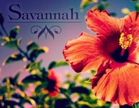 savannah tour book