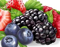 Fruits for yogurt labels, digital painting illustration