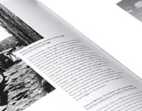 VIU report 2012
