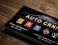 Strahinja toncic on behance business card design auto parts store reheart Gallery