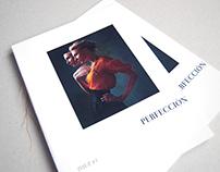 Perfección - revista temática