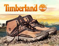 Blog Timberland