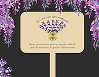 Illustations de fleurs