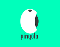 Logo i Video PINYOLA