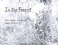 [Fotografia] In the Forest - Bruna Reis