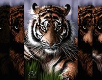 Tigre: pasos de la ilustración