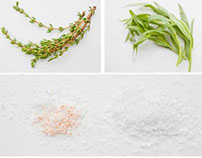 Food Photography || The Basics