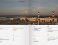 Portucel Soporcel Annual Report 2010