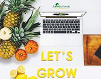 Aamisha Foods Pvt Ltd