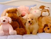"Purina ""Puppy"""