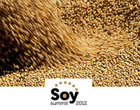 Soy Solution