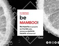 Proyecto Mamboo www.mamboomedia.com