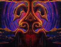 Cosmosys IX: Illusions