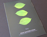 Direct Mail Brochure - What Matters Today TRUST