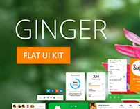 Ginger Flat UI kit