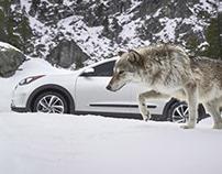 Kia Winter Animals