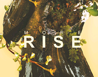 more rise