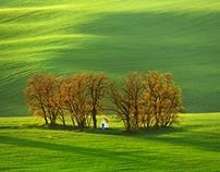 Spring South Moravia