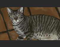 Cat on Tile
