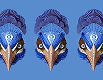 Birdman Vegetal Proteine