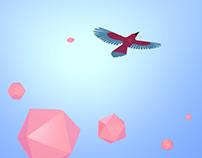 360° Bird