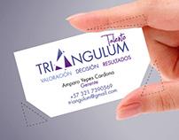 Desarrollo de Marca para Triángulum Talento