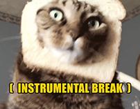 Cat Meme Karaoke