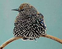 """Birds"" - Realistic fineart by Acryl Studio"