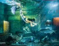 Unterwasser Fotografie.  Diese Shooting war mit Abstan