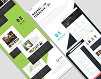 Naukri CSM Micro-website Themes