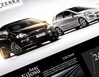 Zebra Logo Design & Web Site