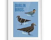Dublin Birds