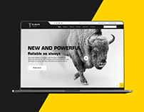 Bizon Tech - Landing Page