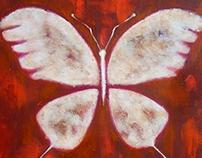 Inca Butterfly