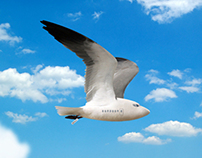 Birdplane Airline