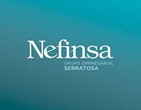 NEFINSA
