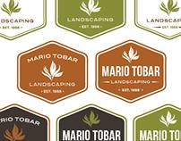 Branding: Mario Tobar Landscaping