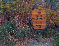 Walk Through Fear