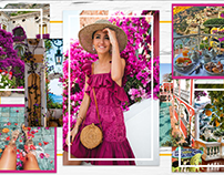 Industry Project: Lilly Pulitzer