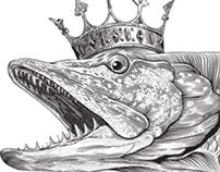Queen pike