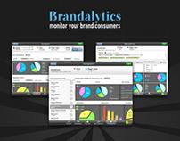Brandalytics Ipad App for Brand Managers