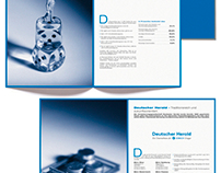 """Berghofer Consulting"" Image-Brochure"